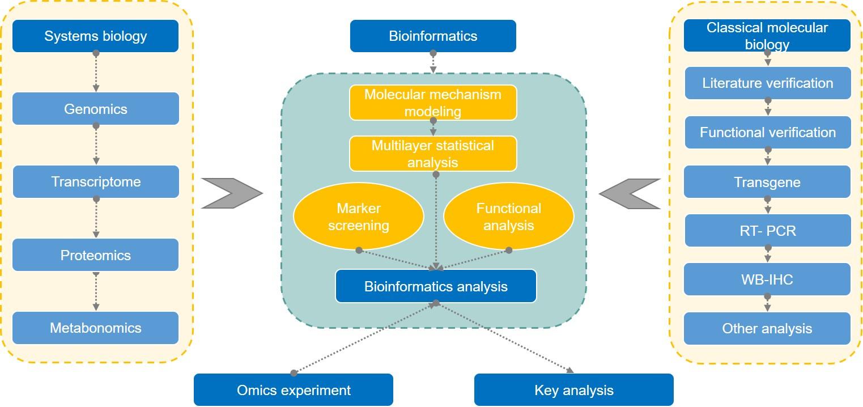 Multi-omics Analysis of Mitochondria